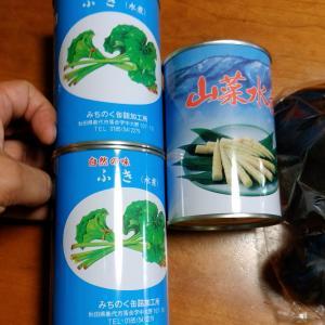 秋田の山菜