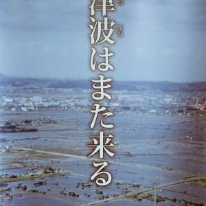津波防災の日・世界津波の日