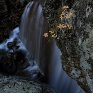 紅葉の杉田川渓谷,滝巡り (三日月の滝&聖滝)