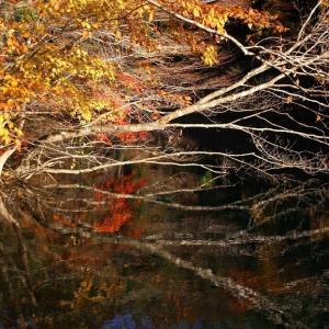 山紫水明錦繍の滑川砂防ダム