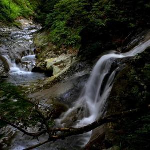 花咲き水踊る初夏の羽鳥湖高原 御鍋小滝 ①