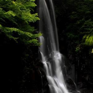 秘境滝と岩沙参を求め会津下郷の観音川源流へ~三輪滝 2