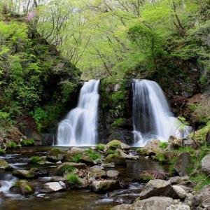 晩春の羽鳥湖高原滝巡り~ツツジ咲く明神滝 ②