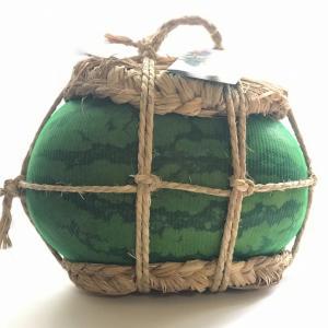 スイカのハンドバッグ