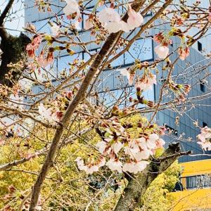 きっと 春