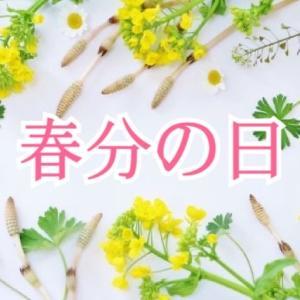 春分の日のスピリットカラーから【天体色数図より】
