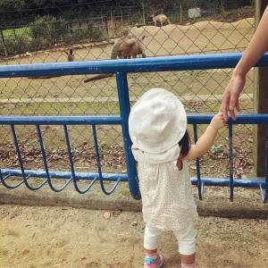 2回目の動物園