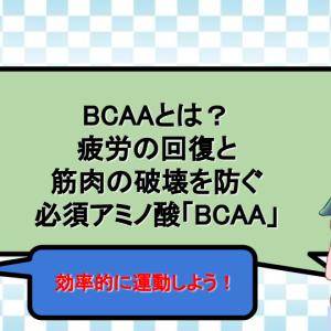 BCAAとは?疲労の回復と筋肉の破壊を防ぐ必須アミノ酸「BCAA」のご紹介