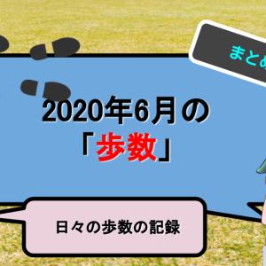 【ウォーキングダイエット】6月に歩いた歩数の集計【2020年6月ダイエット記録】