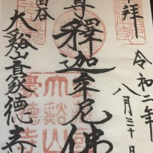 【御朱印】豪徳寺に行ってきました 東京都世田谷区の御朱印