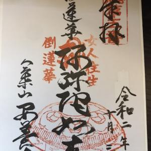 【御朱印】安養寺(倒蓮華寺:さかれんげ)に行ってきました|京都市中京区の御朱印