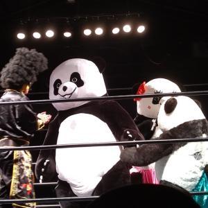 新根室プロレス東京公演観戦記その1。練り込まれたブックに驚いた話。