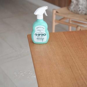 ウタマロ クリーナーで少しづつ大掃除
