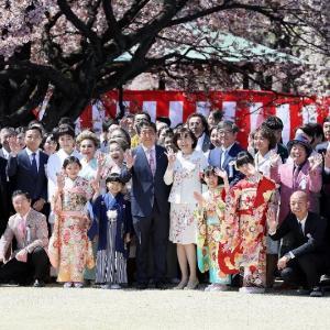 カツカレー、パンケーキと来て、今度は桜で政権追及!
