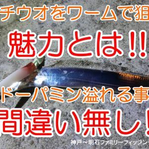 【太刀魚】タチウオをワームで狙う魅力とは何かっ‼ @餌釣りとの違いをご説明します
