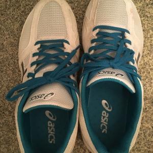 靴:「PayPay感謝デー」でアシックス/ライトレーサーを買いました