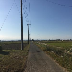試走:第10回 小江戸大江戸200kその1(笹目橋ー15km地点)