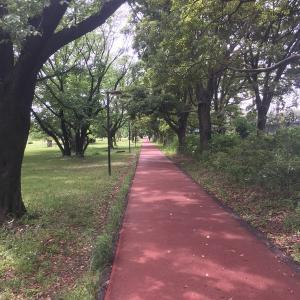 練習:新しいランニング経路を探す。30km+20km+20km