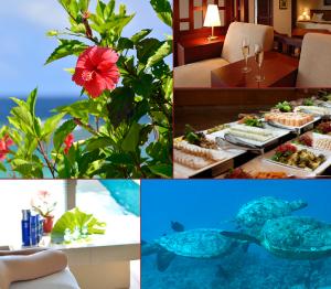 懸賞情報(10/1)「宮古島豪華リゾート 2泊3日の旅、豪華ホットプレートセット、Amazonギフト券1万円分、QUOカード 」