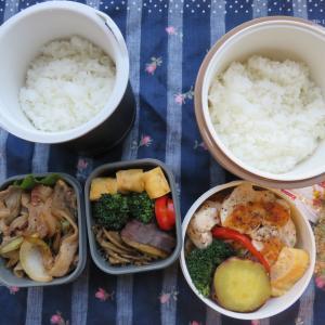 さっぱり✨豚バラとセロリのポン酢炒め弁当✨*・.・*