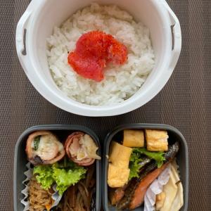 さっぱり焼き鮭弁当+゚。