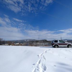ようやく雪…そして晴れ間