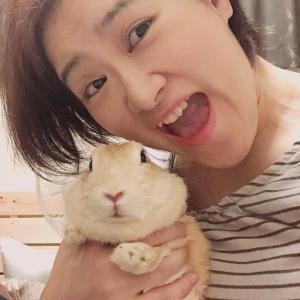 ウサギのレイチェルと写真撮りたい!