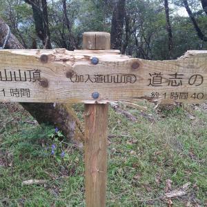 大室山と加入道山へ