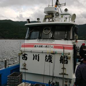 宇和海 ケンサキゲーム 古川渡船 9月12日