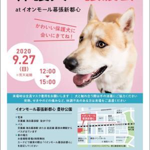 0927 いぬ助け譲渡会@イオンモール幕張新都心
