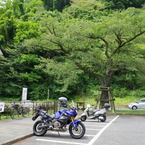 山へ ~神奈川半周~