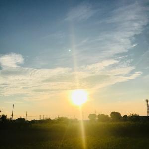 おはようございます!☀︎*.。