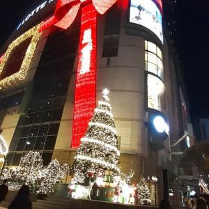 2020クリスマスイルミネーション始まりました @ソウル