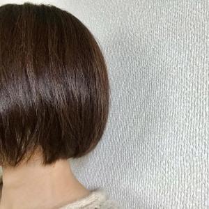34歳、髪の毛の曲がり角の話。髪を洗う&乾かす時間も時短したい理由
