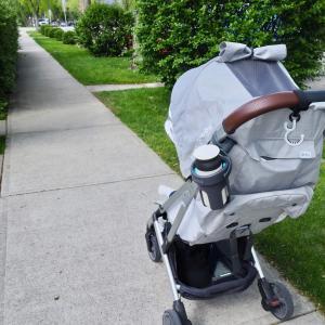 今の季節 散歩に持ち歩くもの。買って良かったドリンクホルダーと愛用マイボトルが使える!