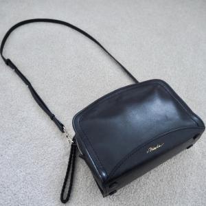 使うモノだけ持ち歩きたい。バッグの中身見直し!マスク入れは無印99円アイテム。