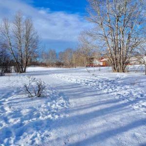 「冬さんぽ」で見つけた自然素材で玄関インテリアを楽しむ。