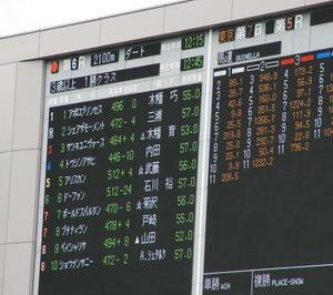 ドーファン、東京6R3歳上1勝クラス(500万下)9着