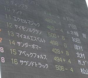 ナンナ、東京3R3歳未勝利戦14着