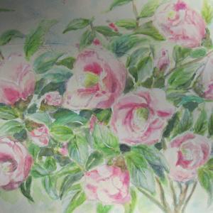 ピンクの椿  模写