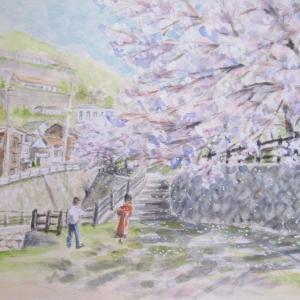 宇治川公園の桜