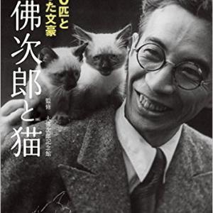 大佛次郎と猫:500匹と暮らした文豪   大佛次郎とねこ写真展