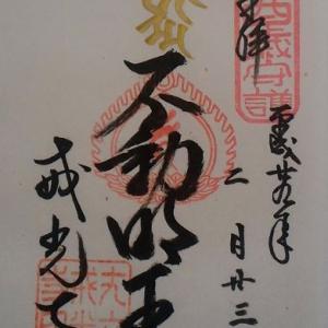 《京都》泉涌寺塔頭 戒光寺の酉年限定御朱印とお役立ち情報