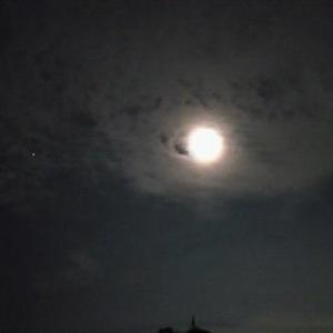 日の光も大事だけど月の光