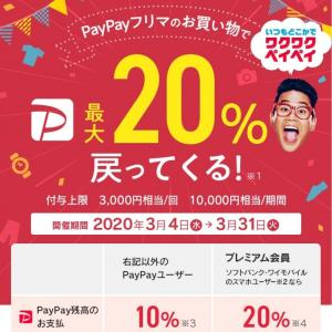 【日記❶】 3/31までPayPayフリマで最大20パーセント還元〜Switchライト買って売ったら儲かるやないか!!〜