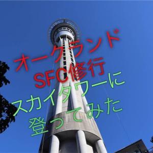 驚愕アクティビティ「スカイジャンプ」に「スカイウォーク」!オークランドのスカイタワーに登ってきました