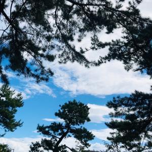 ソロ練の六甲山最高峰往復ランニング