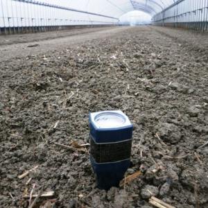 土壌pH測定