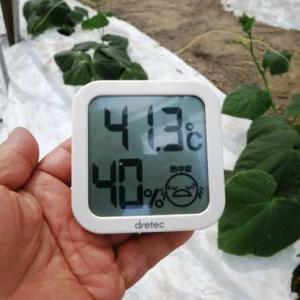 只今41℃