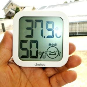 日陰で38℃